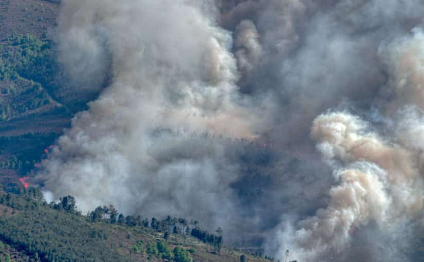 CAL/OSHA's Plan For Wildfire Air Quality Protection
